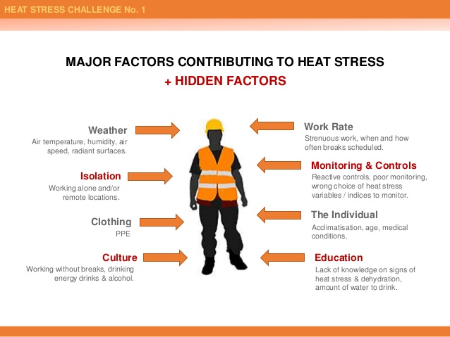 Heat stress factors Autometrix